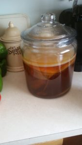 A picture of a scoby in a glass jar with Kombucha brewing.
